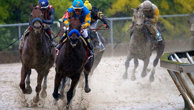 Victor Espinoza aboard American Pharoah leads the pack out of turn four during the 140th Preakness Stakes.