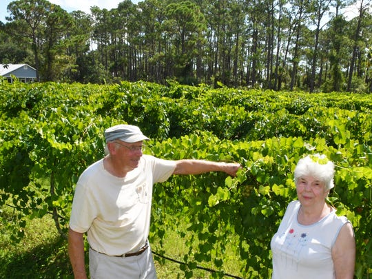 Bob and Ruth Anne Parker, owners of RiverHouse Vineyard