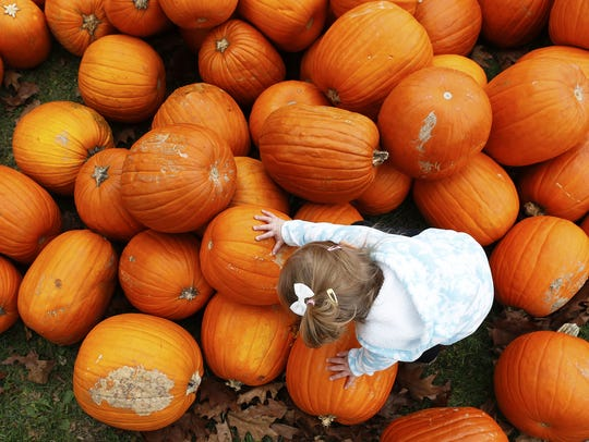 Melody Newark, 2, climbs on the mound of pumpkins waiting