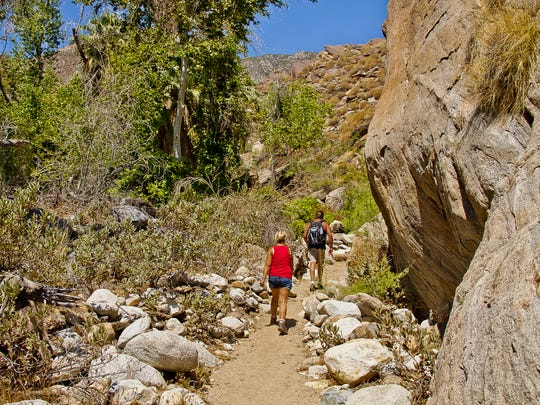 The Indian Canyons are a popular hiking trail in Palm Springs.