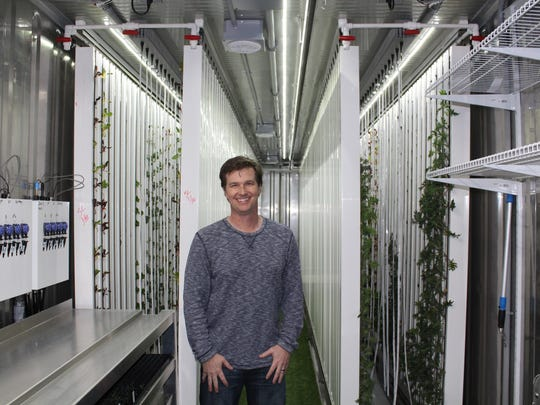 Mark Norton of Picked Fresh Farms grows kale and lettuce