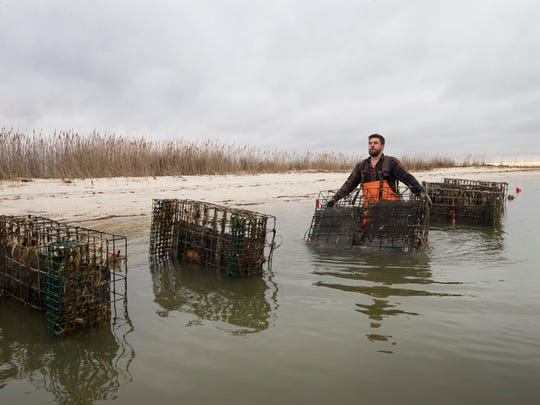 Matt Gregg, owner of Forty North Oyster Farm in Little Egg does upkeep on his oyster cases that make up his oyster beds. The cases are placed in deeper water during winter to avoid freezing and are moved to shallower waters once it starts to warm up.