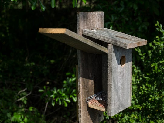April 20, 2017 - A new bluebird house is seen at W.C. Johnson Park in Collierville. This is one of six bluebird houses recently installed at the park.
