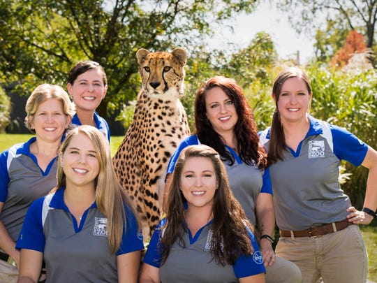 2017 Cat Ambassador Program trainers pose with Donni. Front row, left to right: Andrea Haugen and Xan Van Vactor. Back row, left to right: Alicia Sampson, Linda Castaneda, Colleen Nissen and Alle Barber.