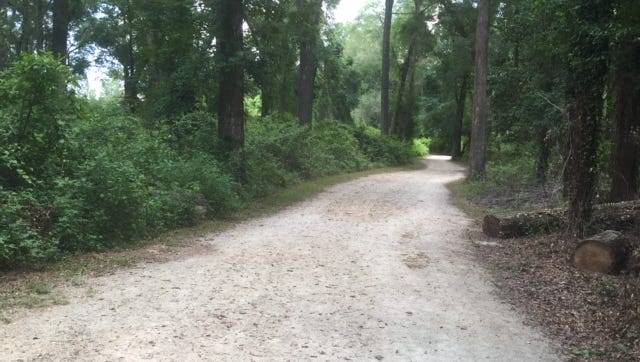 The Move walk will hit the Miccosukee Greenway trail at 1 p.m. Sunday.
