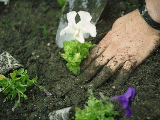 Planting Flowers 2