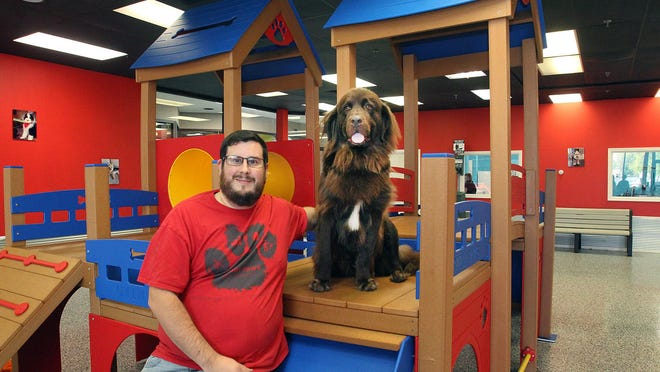 David Artman sits next to his dog Kya in the day care area of his dog park on Tuesday at Muddy Paws in Freeport.