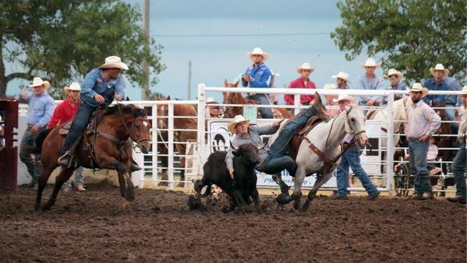 Nitro (the gray gelding to the right) carried cowboy Blair Jones to a co-championship at the 2019 Phillipsburg Rodeo. The horse, owned by Dru Melvin, will be back to carry more steer wrestlers during the 2020 Phillipsburg rodeo, to be held July 30-August 1.