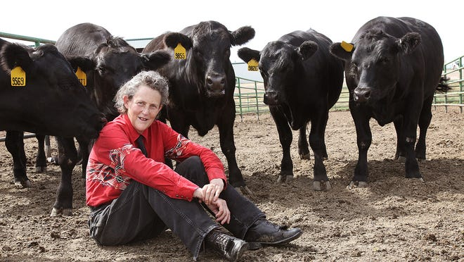 Temple Grandin says her autism helped her become a world-renowned expert in animal science. She also writes and speaks about the condition, believed to afflict 1 in 68 American children.