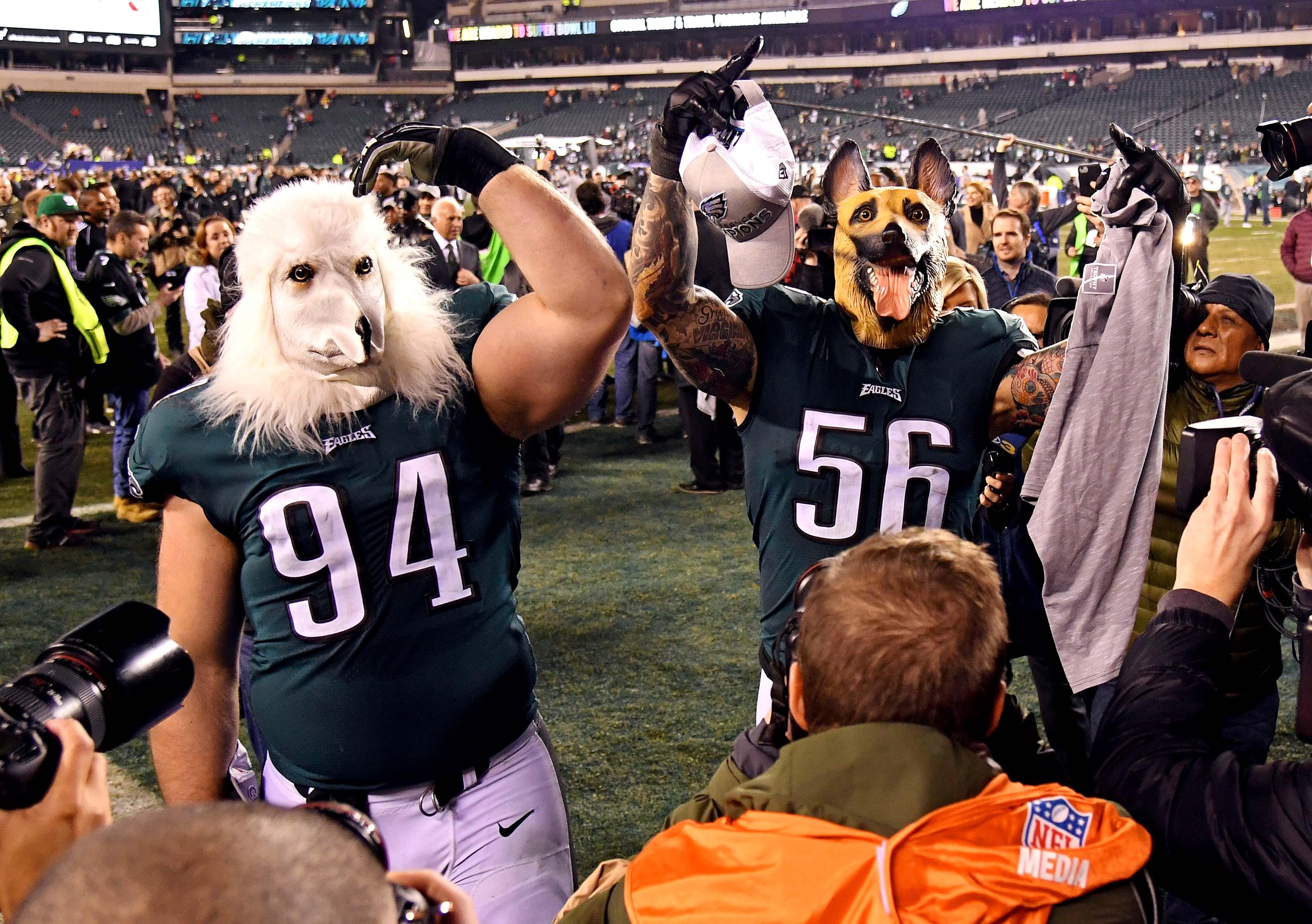 dog mask eagles