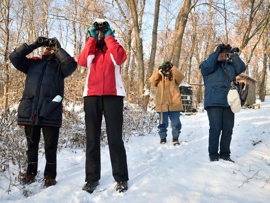 Birders scan the trees at the annual Christmas bird
