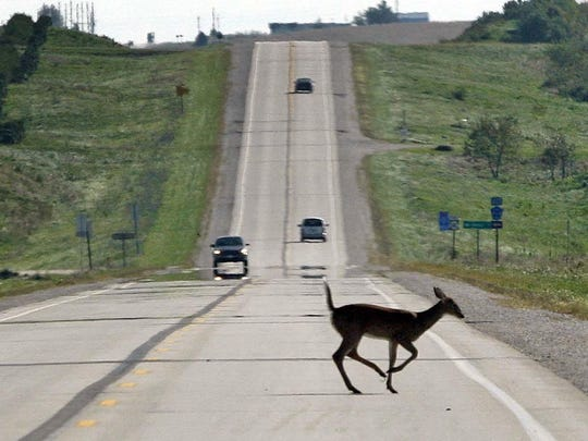 A deer dashes across Iowa Highway 141, just west of Templeton, in 2010.