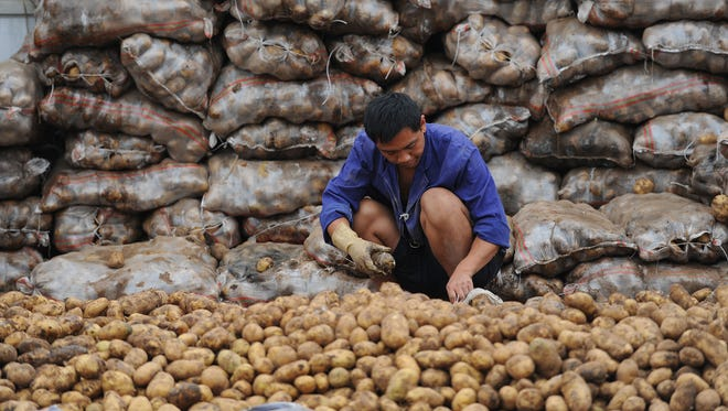 A Chinese worker selects potatoes at a market in Hefei, in 2010.