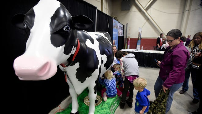 The Pennsylvania Farm Show attracts hundreds of thousands each year to Harrisburg for the largest indoor agricultural exposition in the nation. There are over 12,000 competitive exhibits, more than 5,200 animal competitions, and 300 plus commercial exhibits. Younger visitors had a working milk cow to try their skills.