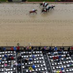 Watch this British TV broadcaster corral a runaway racehorse
