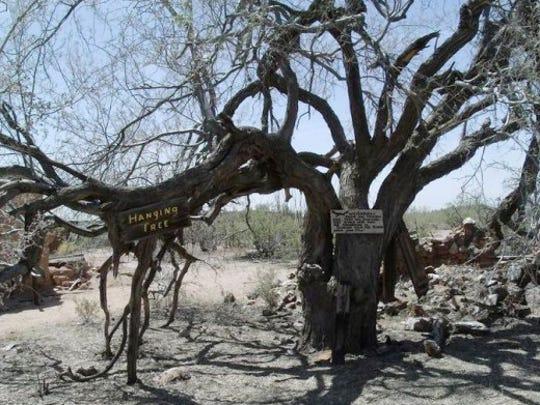 Vulture Mine hanging tree