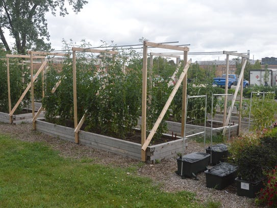 Growing Solutions Farm is a 1.2-acre vocational garden