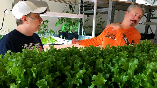 Joel Klamann (left) and aquaponics expert Henry Hebert look over a rack of lettuce at the hydroponic garden where produce is grown for use at O'Brien's Irish American Pub in Milwaukee. The pub is at 4928 W. Vliet St. The indoor farming operation is next door.