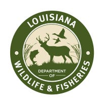 """An Abbeville man has been cited for multiple offenses, accused of using a bow and arrow to kill a deer that the Louisiana Department of Wildlife and Fisheries described as """"legendary"""" in a press release."""