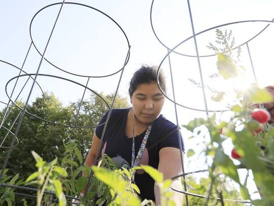 Green Bay East student Samantha Cisneros Chavez picks