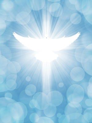 Shining Dove