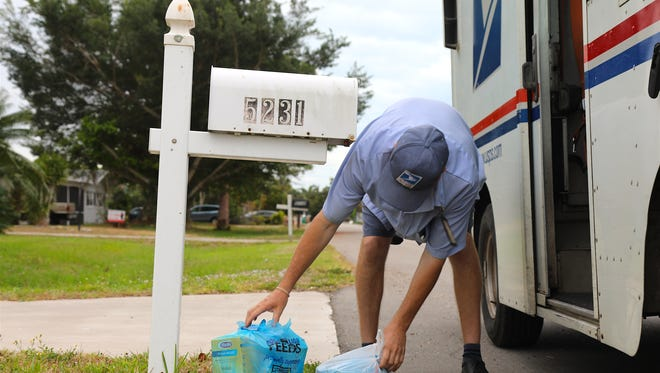 Cape Coral letter carrier Dan Rams collects bundles of food on his Saturday route as part of the 26th annual National Association of Letter Carriers food drive.