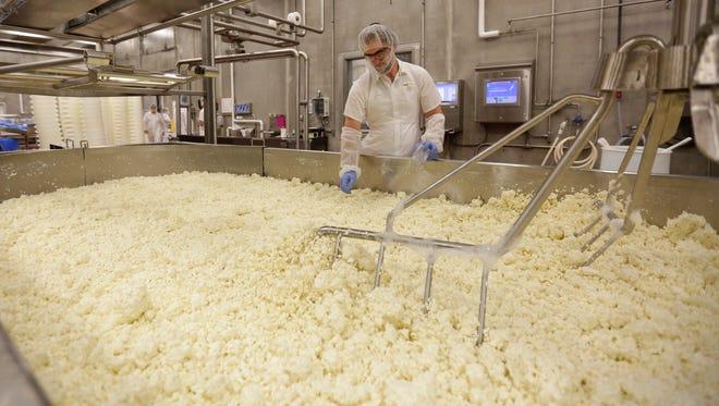 Brad Jessy Evanson takes cheese sample for PH testing at Sartori Cheese in Antigo.