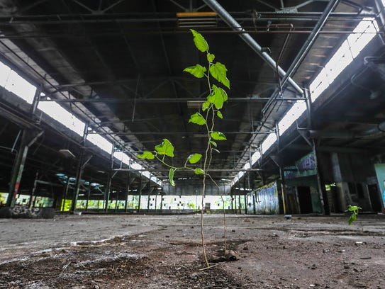 Inside one of 20 buildings on the large, contaminated Black Leaf property on Dixie Highway in May 2017.