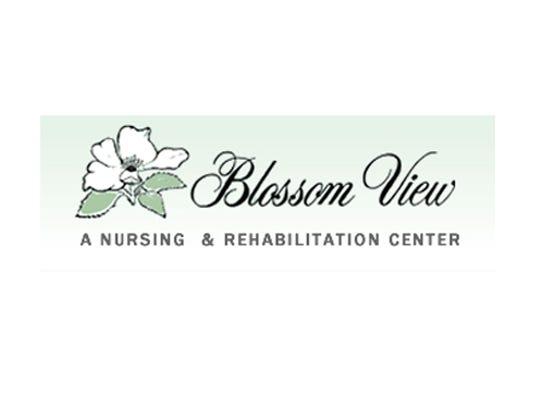 Blossom View Nursing Home Jobs