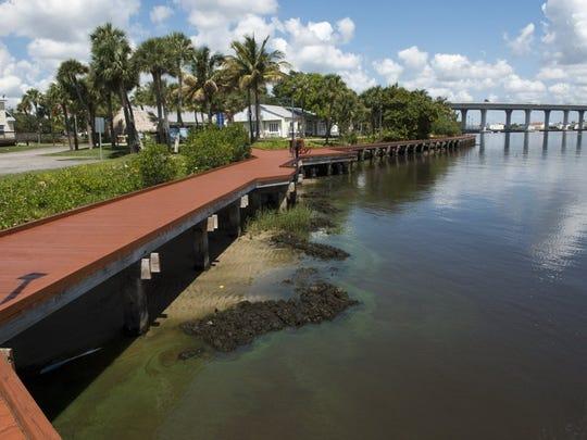 An algae bloom makes its way along the Riverwalk on