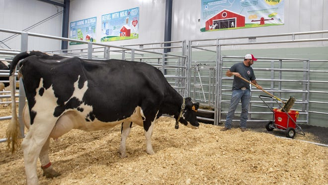 Jason Wamba, Georgia Department of Agriculture manager of warehouse and bonding division, cleans out a stall in the Georgia Grown building at the Georgia National Fairgrounds on Oct. 2, 2018 in Perry, Ga. The fair will feature a Baby Barn for the first time where guests will get a chance to watch the birth of Holstein calfs. (Jason Vorhees/The Macon Telegraph via AP)