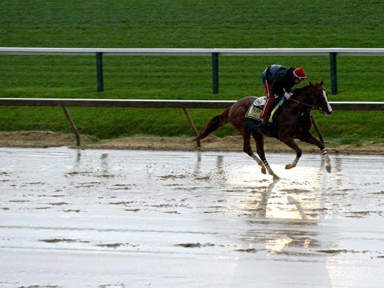 Just how does horse betting work?