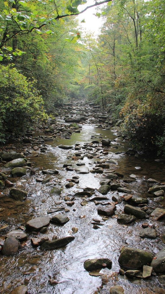 The Foothills Conservancy of North Carolina celebrates its 20th anniversary at Camp Golden Valley. Since 1995, the Morganton-based conservation organization has permanently protected 50,000 acres including special places like Chimney Rock, the Linville Gorge, Wilson Creek, Catawba Falls and the South Mountains. Pictured is the Jacob Fork River in South Mountains State Park.