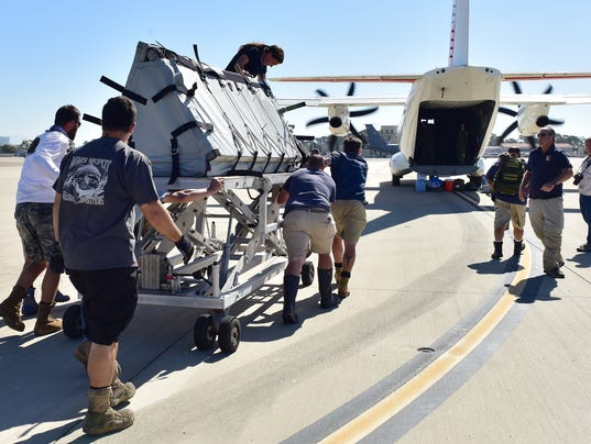 Coast Guard transports trained dolphins to Mexico
