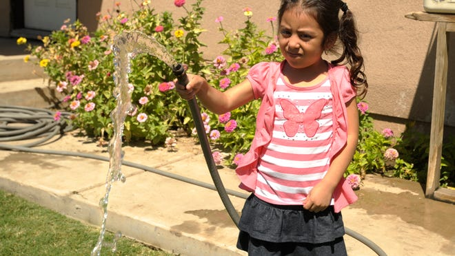 Residents in the Seville area have been told that it is OK to drink and use the water from their faucets from their newly-drilled well. April Gonzalez, 5, pictured, waters her front lawn on the 15300 block of Ave. 383 in this 2014 file photo.