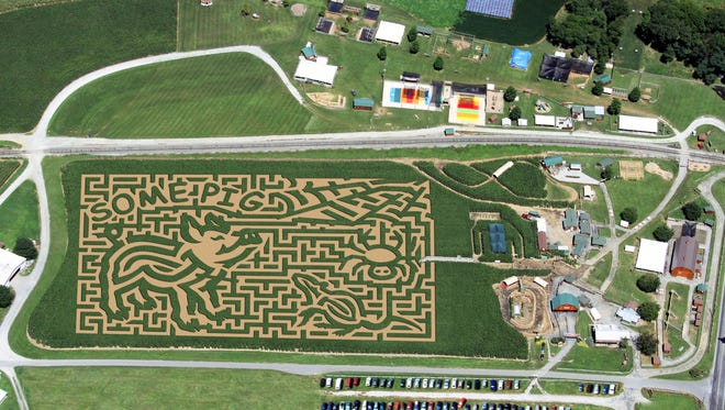 "Cherry Crest Adventure farm has opened its newly designed ""Charlotte's Web"" corn maze."