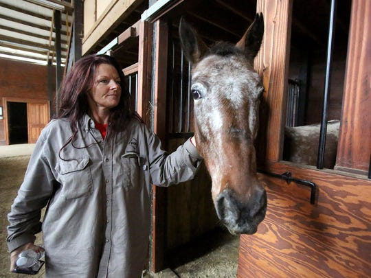 Teri Silva, founder of Big Hearts Horse Rescue, greets