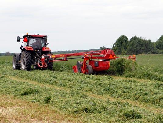 WSF 0713 Crops hay