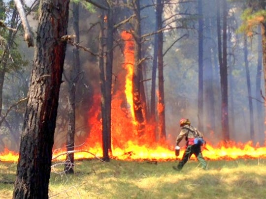 "Flames leap high during a prescribed burn on West Mountain, because the fire hit a ""jackpot,,""which is a concentration of large logs and snags that burn with higher intensity than grass, pine needles and small sticks."