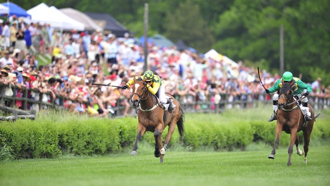 The average speed of a steeplechasing thoroughbred is 30 miles per hour. The average steeplechase horse weighs 1,100 pounds, while the average jockey weighs 140 pounds.