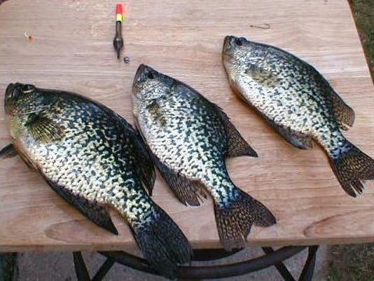 635796673228677910-crappie-thill