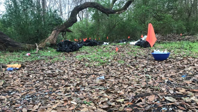 Animal remains were found scattered along a section of Debutante Road near Carencro, Louisiana, Feb. 6, 2018.