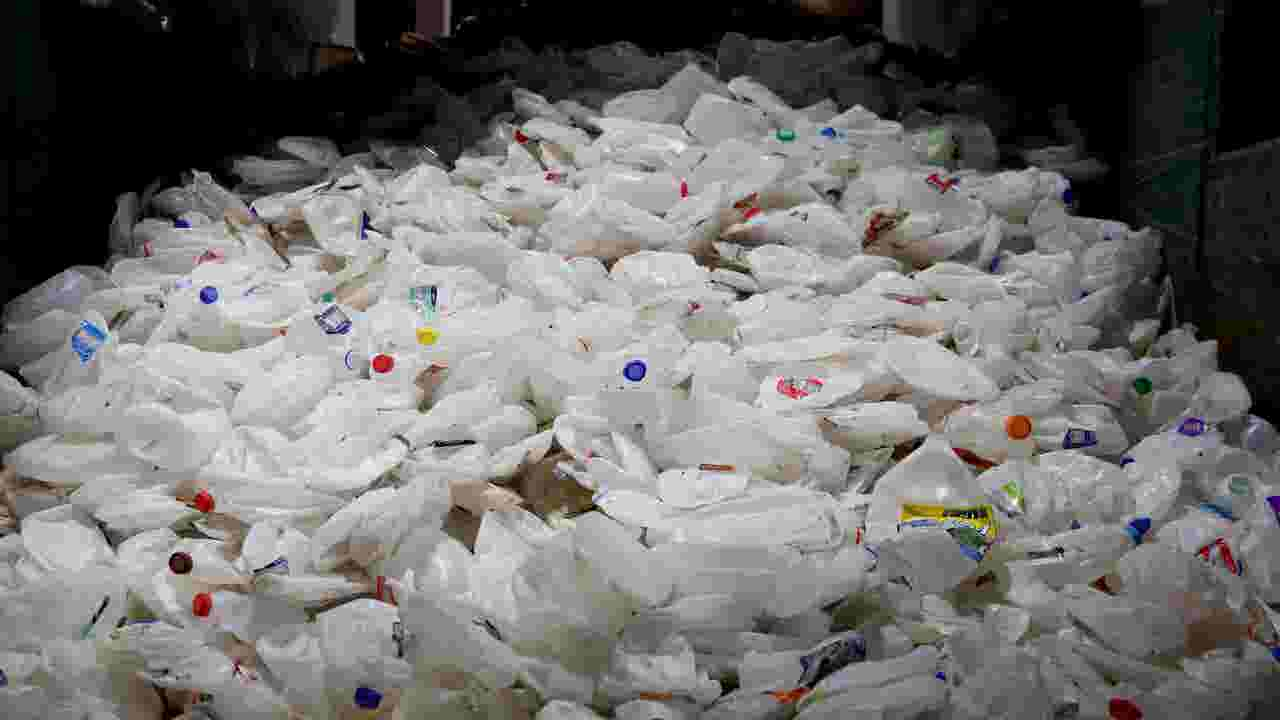 Marion County wants residents to put most recycling in trash   kgw com