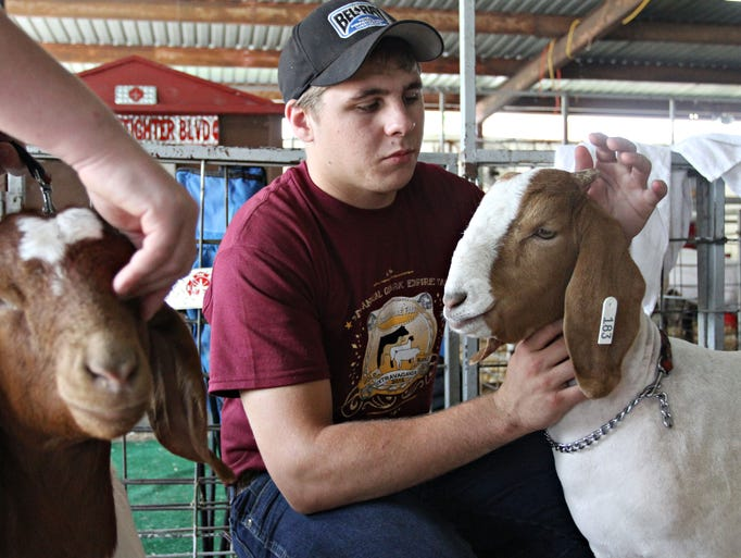 Braden LeMaster, 17, pets one of his goats, Apollo, at the Ozark Empire Fairgrounds on Friday, July 18, 2014.