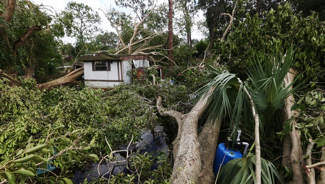 KINFAY MOROTI/THE NEWS-PRESS… Hurricane Irma felled hundreds of large trees in Suncoast Estates trailer park in North Fort Myers, Florida.