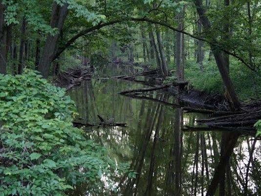 Looking Glass River.jpg