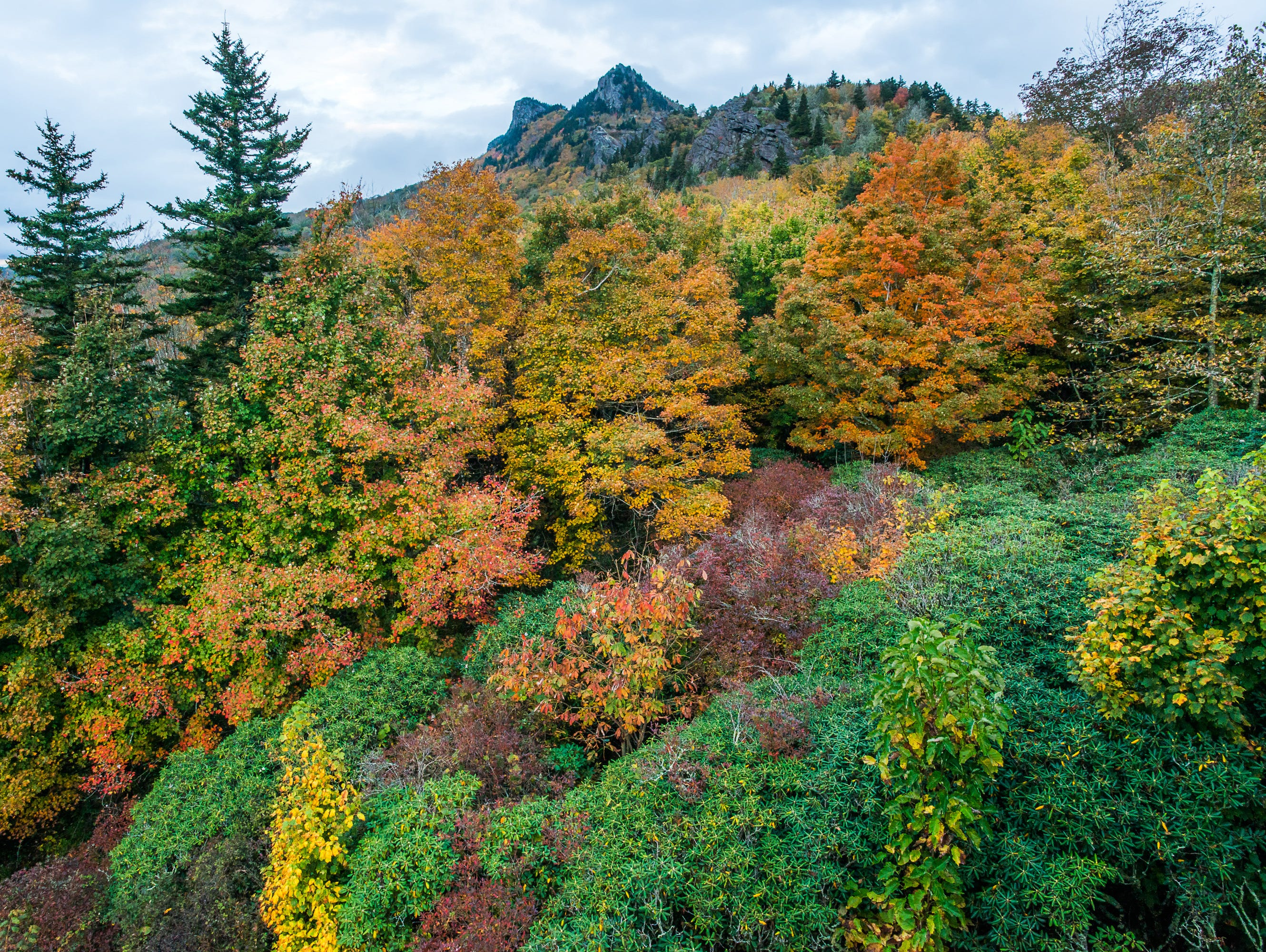 [PHOTO GALLERY] Autumn is bursting with color Grandfather's Mountain Half Moon Overlook.