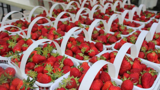 Local strawberries are turning up in tailgate markets and roadside stands.