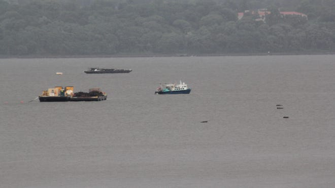 Grand View resident Thomas Wolzien noticed a mass of debris floating away from the Tappan Zee Bridge construction site.