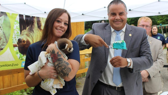 Zookeeper Courtnie Yale gets an assist from Binghamton Mayor Rich David to unveil the genders of the Binghamton Zoo's new red pandas.